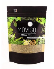 MOVIGO - Stawy