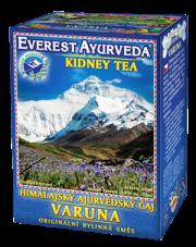 Varuna - Nerki i drogi moczowe
